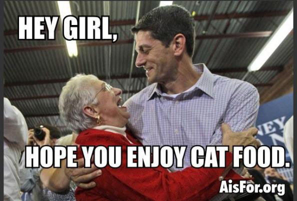 Paul Ryan Budget - Hope you like cat food